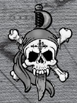 Picture of Skullduggery